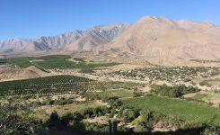 Región de Coquimbo: Valle del Elqui yplayas