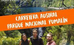 Parque Pumalín: La naturaleza como la mejor inversión